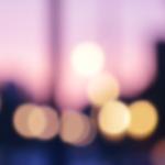 誰よりも速くなりたい〜(DVD)エンドレス・ワルツ/若松孝二監督、広田玲央名、町田町蔵