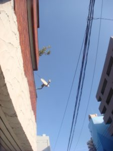 空_20120121