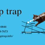 [design works]【ショップカード実績・2017/3】美容室 claptrap のショップカードを制作させて頂きました! #works